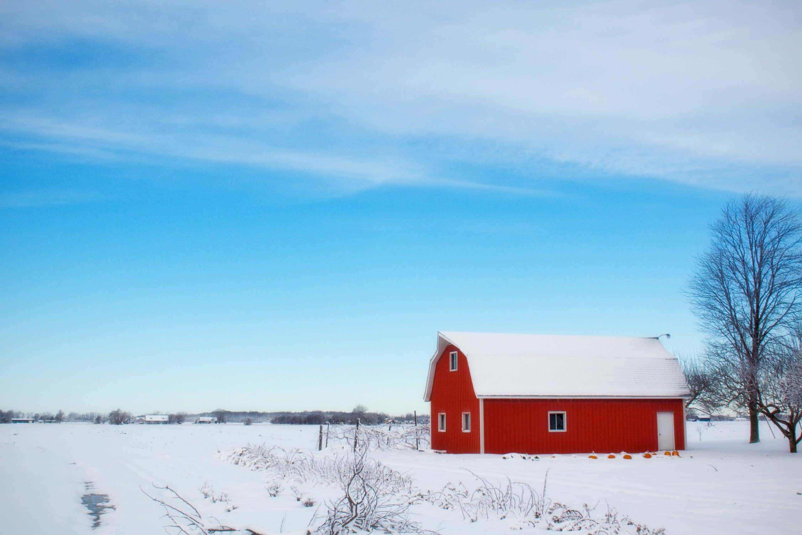 cold-snow-red-countryside-39017
